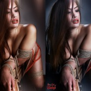 Bondage art – best color and tonal effects