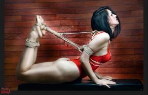 Fine Art of Bondage: Beauty of Rope - Photo Art Book