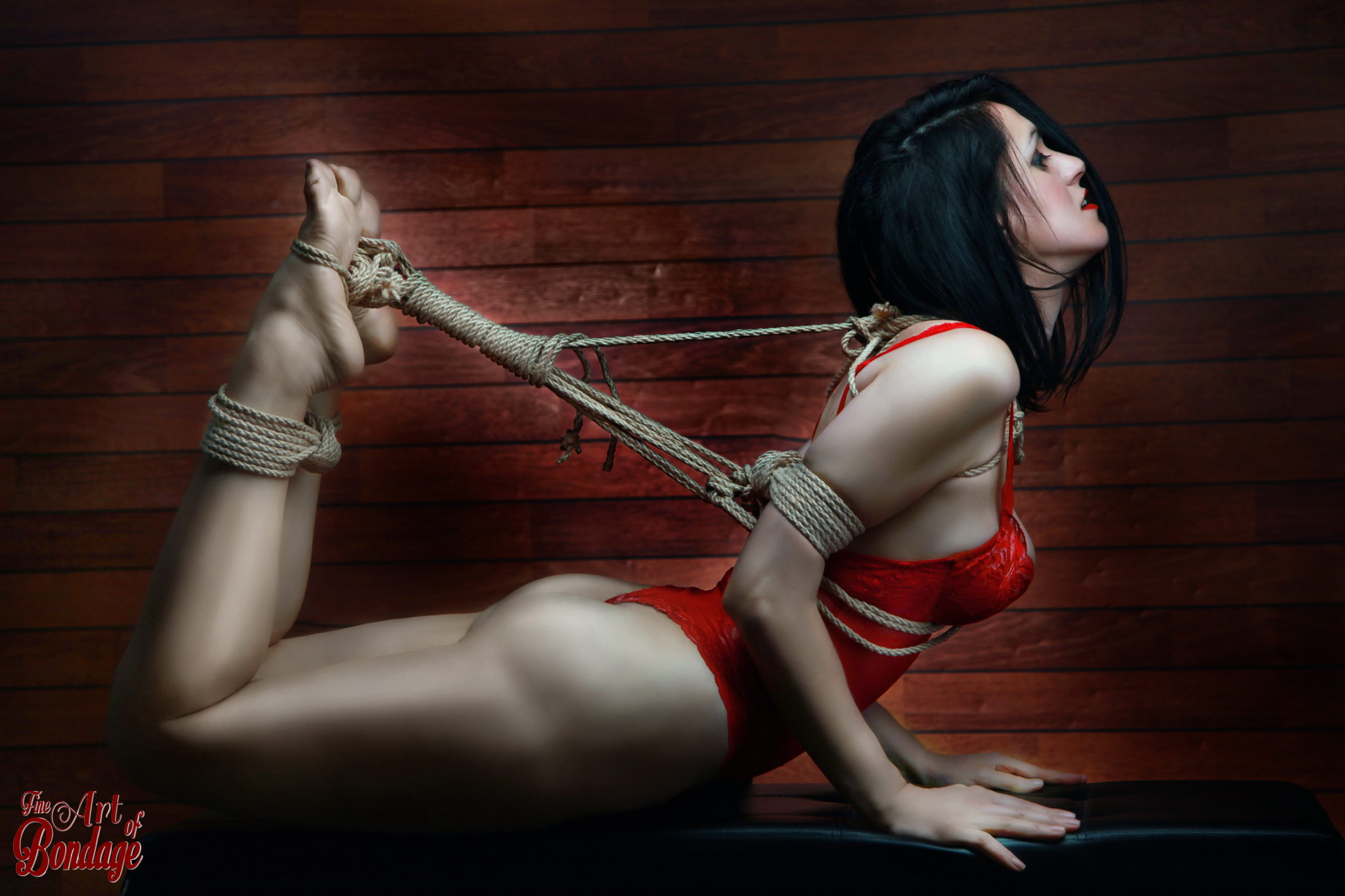 bondage girl  Hogtied - Fine Art of Bondage