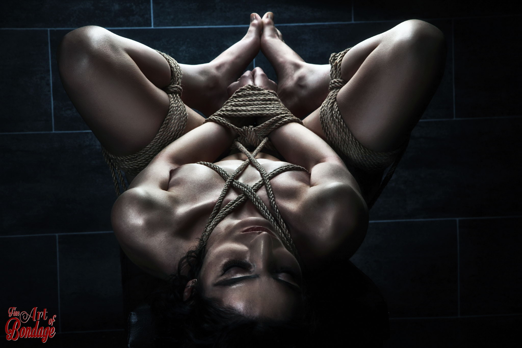 Hardcore Bondage Galleries 47