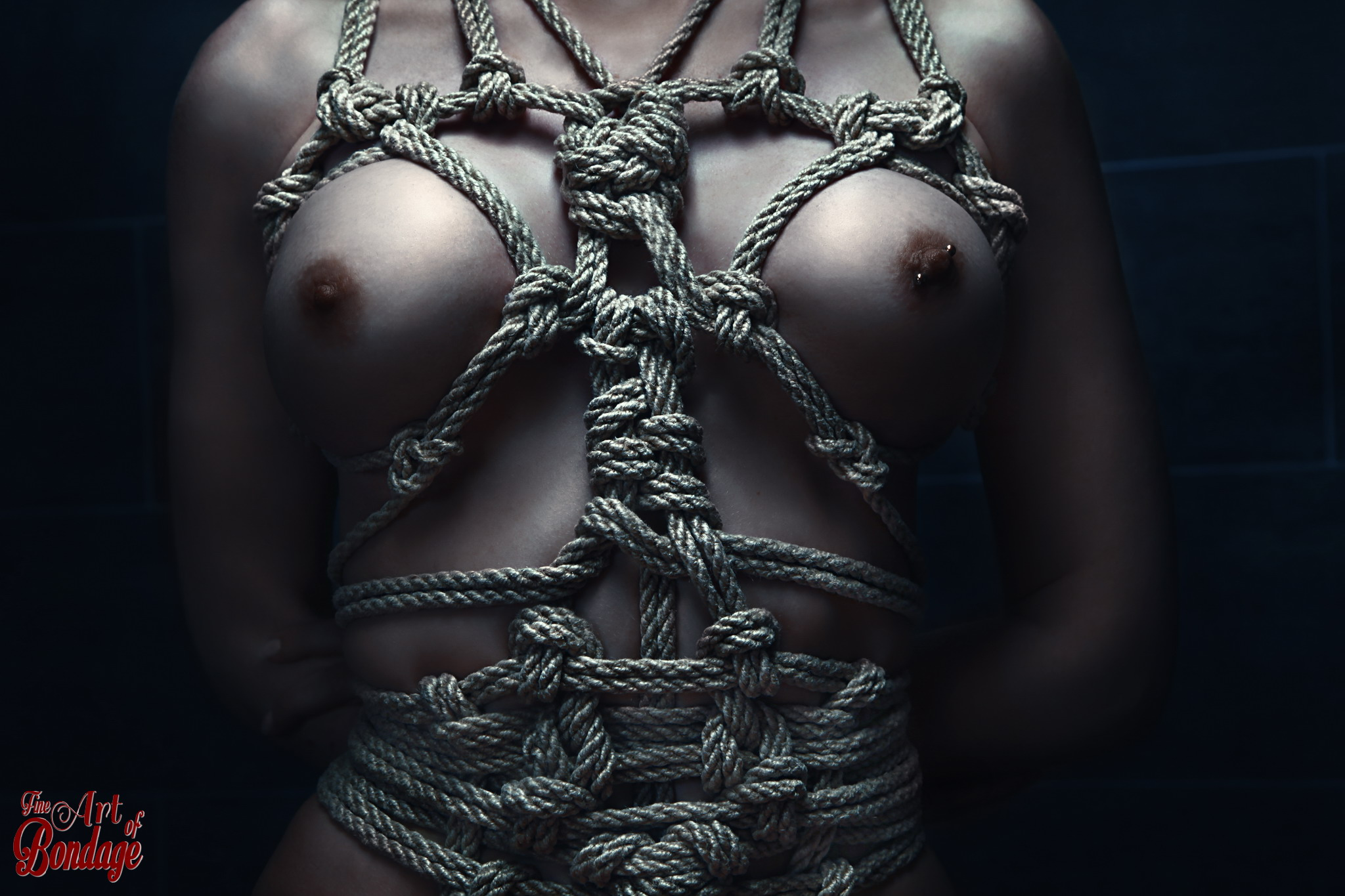 girl bondage art jpg 1080x810