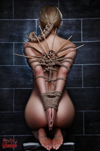 Bound, tied Beauty - Fine Art of Bondage