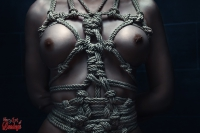 Topless rope, harness close up - Fine Art of Bondage