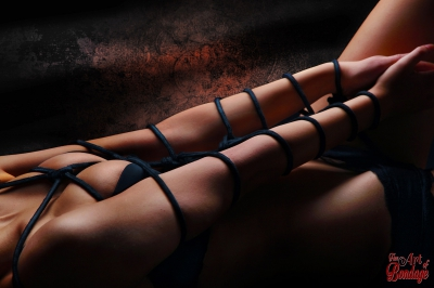 Dragonfly Closeup - Fine Art of Bondage
