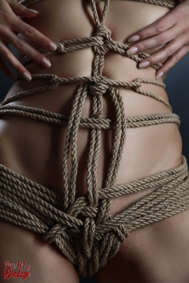 Close up nude, rope harness - Fine Art of Bondage