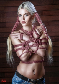 FIne Art of Bondage - Poster Set/Bundle A3