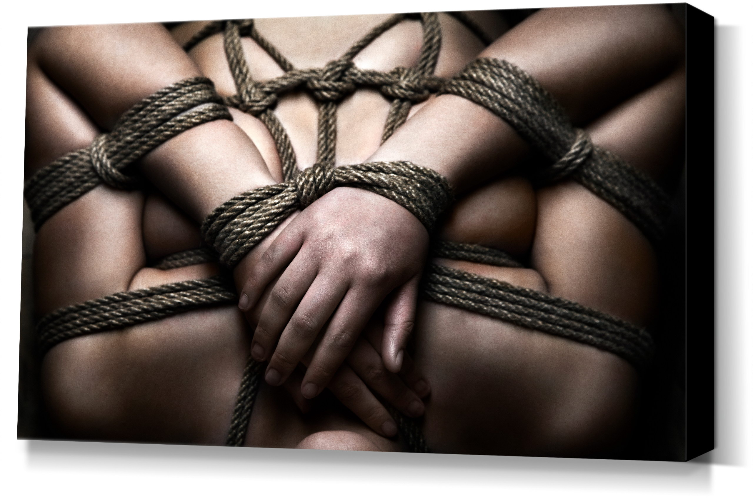 Rope-Closeup- Fine Art of Bondage